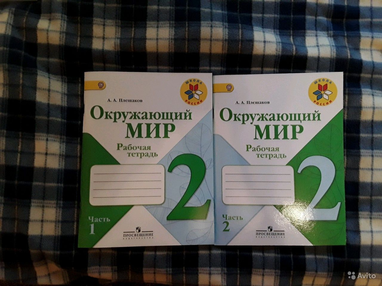 класс решебник плешаков 3 а.а школа по россии окружающему миру