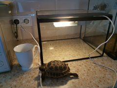 Аквариум/террариум для черепах