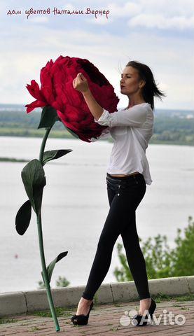 цветы лилии каталог цветов фото