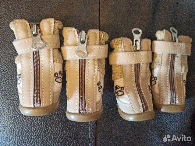 Обувь для собак 89062577662 купить 1