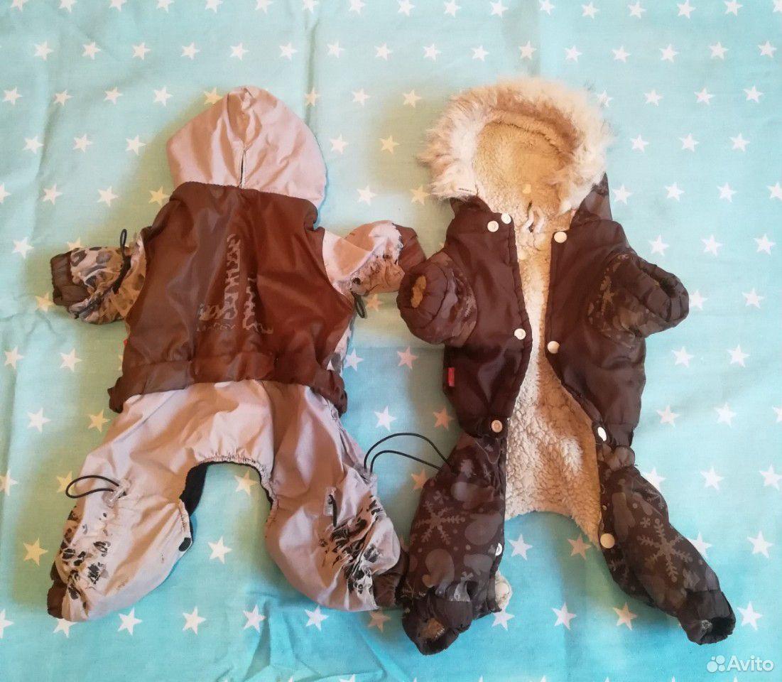 Комбинезон для собаки зима и осень. 30см по спинке  89535107410 купить 1