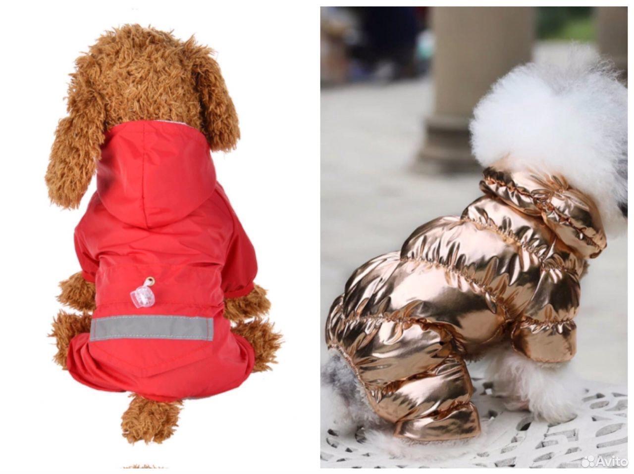 Дождевик и комбинезон для собак  89803226990 купить 1