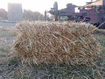 Солома пшеничная — Животные в Великовечном