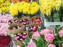Цветы, роза, хризантема цветочная база склад пермь